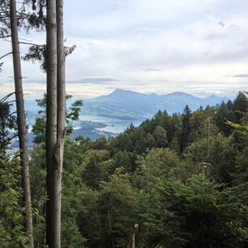 Vierwaldstättersee im Kanton Luzern (Dominik Moser)
